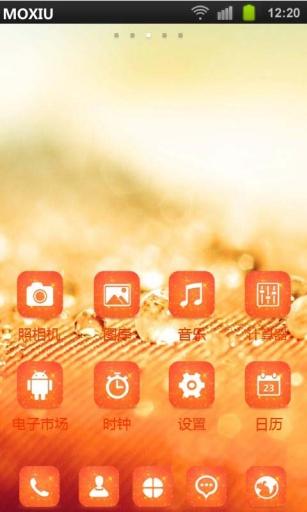 橘黄色微距魔秀桌面主题 壁纸美化软件
