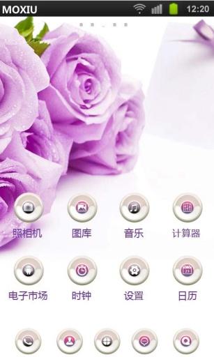 紫玫瑰花语魔秀桌面主题 壁纸美化软件