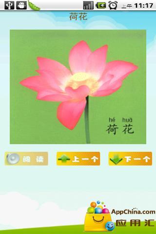 看图识字植物篇