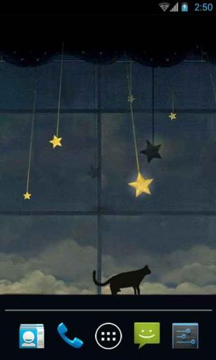 暗夜黑猫动态壁纸
