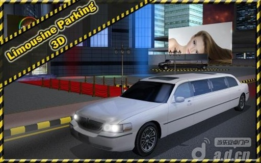 轿车停车3D 精简版截图1