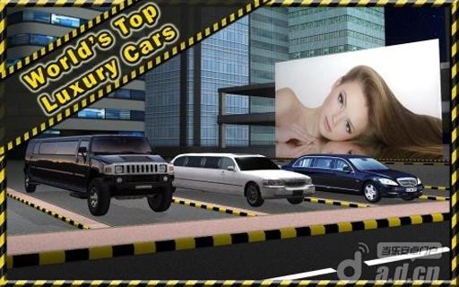 轿车停车3D 精简版截图3
