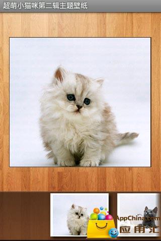 把可爱小猫咪珍藏在手机里作为壁纸,是不是很让人开心呢?