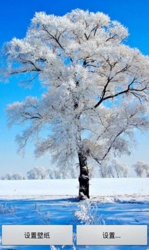 浪漫雪景动态壁纸截图1