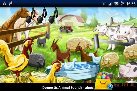 家养动物声音