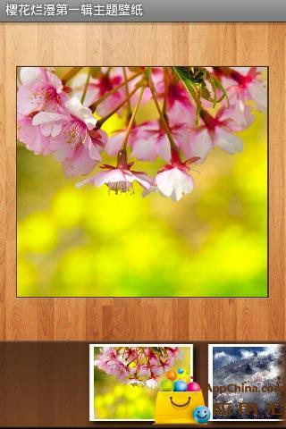 樱花烂漫第一辑主题壁纸