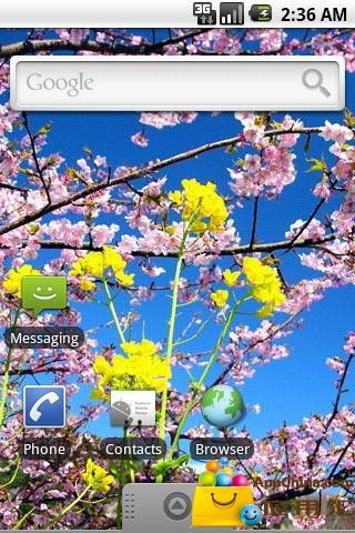 【免費個人化App】樱花烂漫第一辑主题壁纸-APP點子