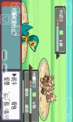 口袋妖怪-幻影之翼截图2