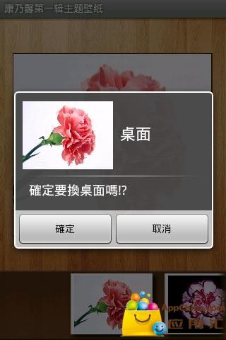 康乃馨第一辑主题壁纸