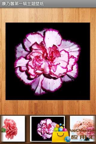 【免費工具App】康乃馨第一辑主题壁纸-APP點子