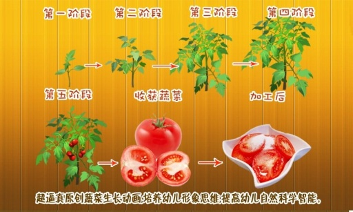 宝宝种蔬菜-傲贝儿童百科截图4