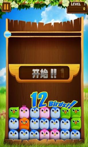 小鸟爆破中文版截图4