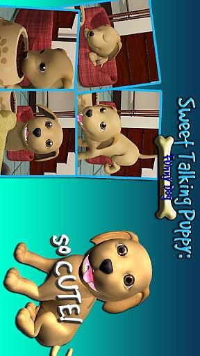 甜说话的小狗:有趣的狗截图4