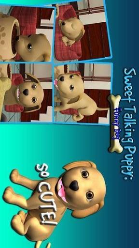 甜说话的小狗:有趣的狗截图7