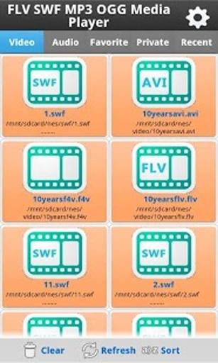 FLV SWF MP3 OGG Media Player截图0