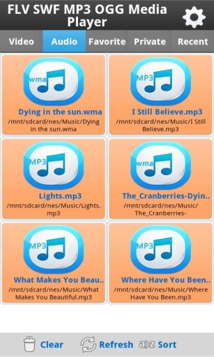 FLV SWF MP3 OGG Media Player截图5