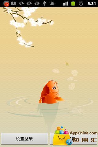 锦鲤鱼流量监控动态壁纸