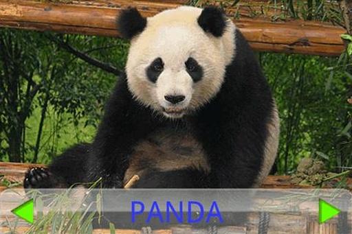 儿童动物园 完整版截图4
