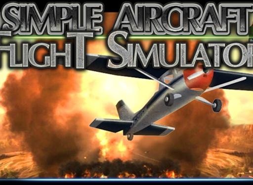 塞斯纳3D飞行模拟器截图3