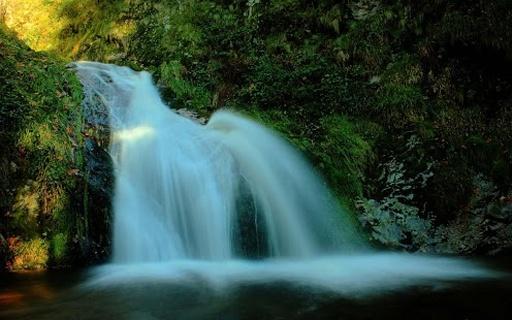 瀑布动态壁纸装饰你的主屏幕,一个惊人的和动画的瀑布.享受!