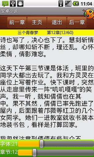 安卓小说截图4