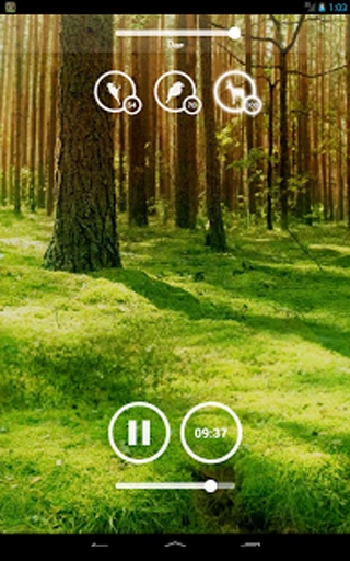 Forest Music截图2