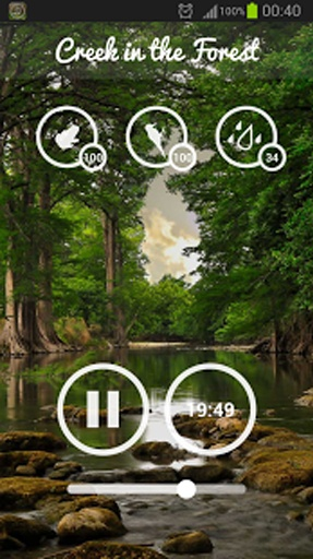 Forest Music截图8