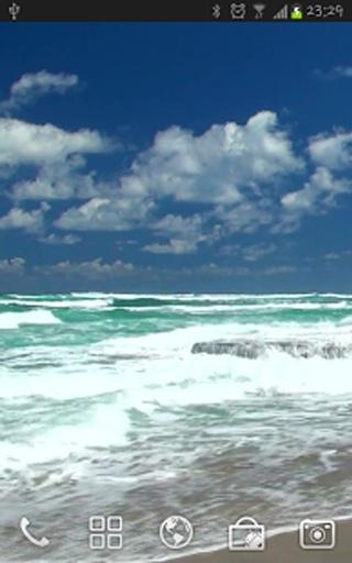 Ocean截图0
