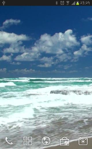 Ocean截图2