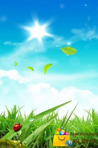 阳光灿烂的夏天