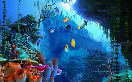 壁纸 海底 海底世界 海洋馆 水族馆 512_320