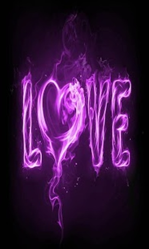 美丽的情人节爱情动态壁纸现在有16个可爱