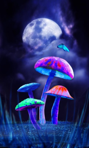 蘑菇精灵主题(锁屏桌面壁纸)截图3