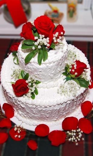 生日蛋糕创意v1.4_站外应用