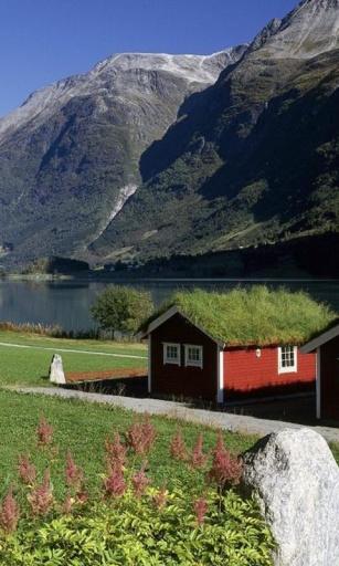 挪威风景图片动态-