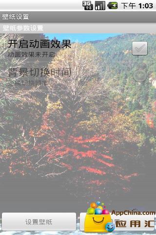 浪漫深秋枫叶林动态壁纸