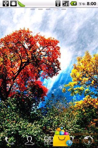 """介绍 浪漫深秋欣赏世界上最美的枫叶林""""米亚罗""""是藏语,意即""""好耍的"""