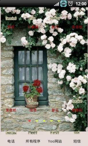 YOO主题-墙上花