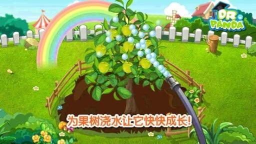 熊猫博士·果蔬园
