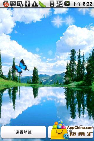 蓝天白云蝶儿飞动态壁纸