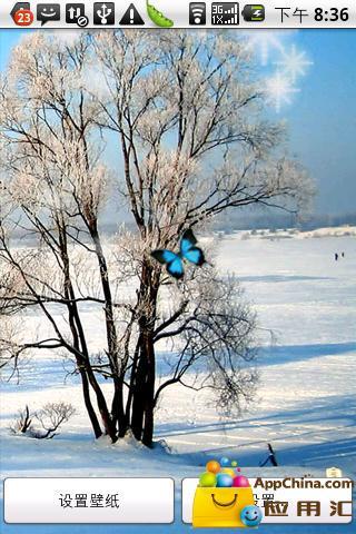 浪漫雪纷飞动态壁纸 個人化 App-愛順發玩APP