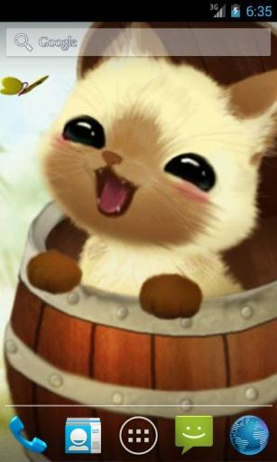 小猫在一个桶动态壁纸