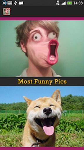 最搞笑的图片截图7