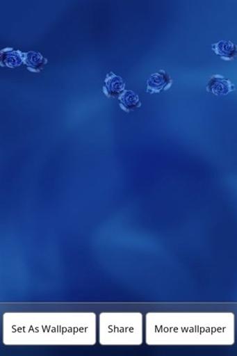 蓝玫瑰动态壁纸