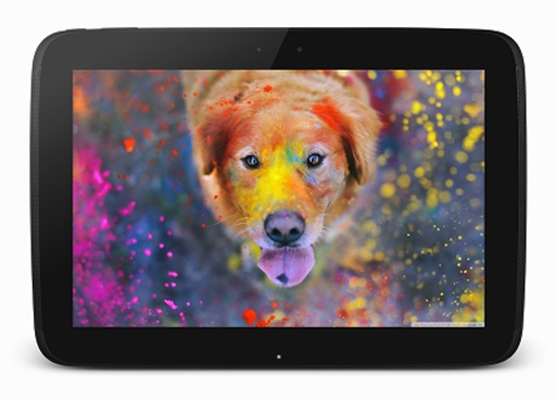 哪个是你最喜欢的宠物这是我的可爱的小狗我们很多回答同样的事情非常相同的question.Love和爱戴我们的宠物狗是如此special.So所有的狗爱好者在这里是一个伟大的消息现在,你可以个性化你的手机的主屏幕,最美丽,最惊人的,令人惊叹的壁纸可爱的狗和小狗免费!可爱的小狗壁纸HD是移动应用程序,让你整个world.