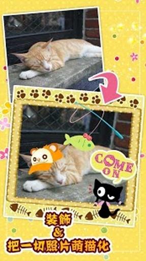 我的猫咪照片贴纸簿截图0