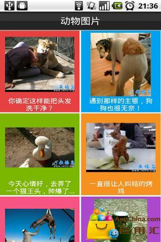 搞笑图片(来源于来福岛,天天更新)截图1