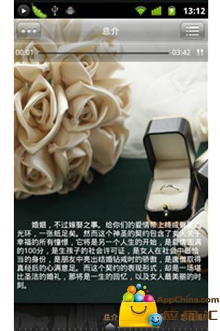 孙燕姿 - 维基百科
