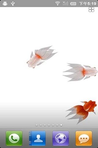 掌上金鱼动态壁纸