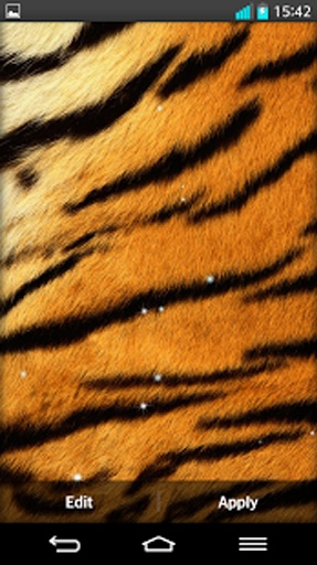 老虎 动态壁纸截图1